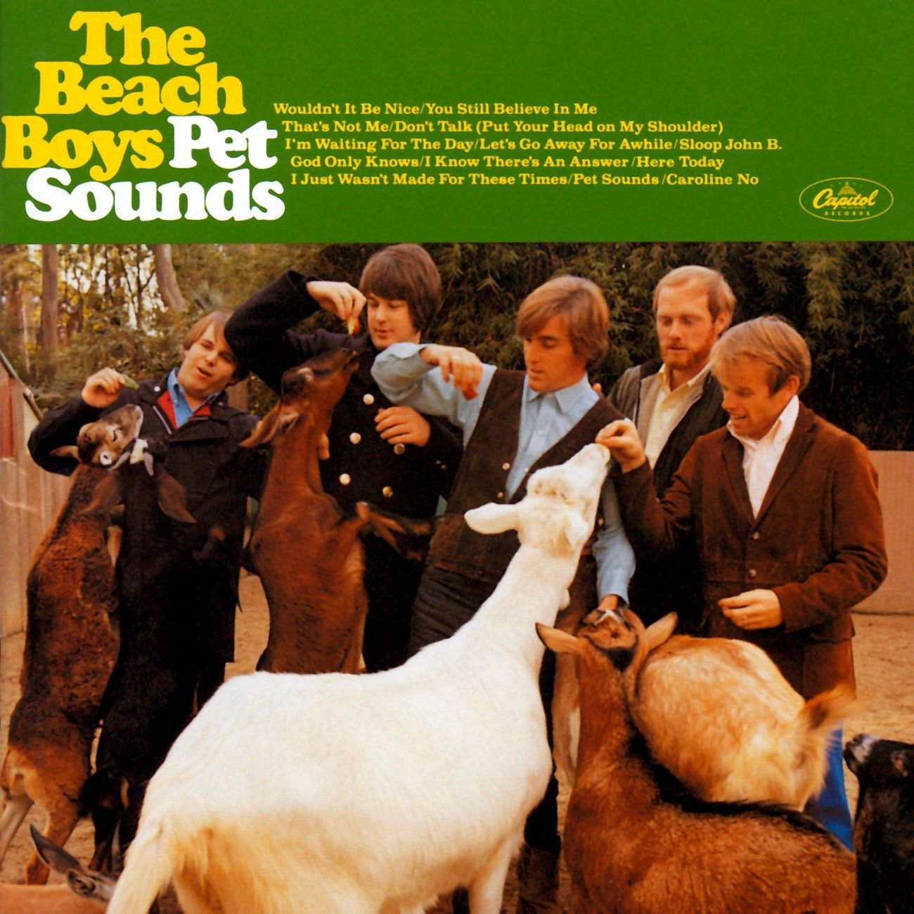 Beach Boys Pet Sounds
