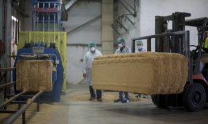 Cars-parts-made-from-rice-husks-SEAT-is-already-researching-it_09_HQ